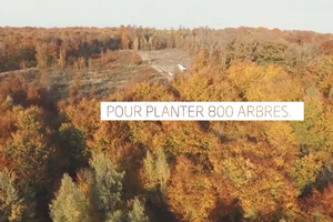 VIDEO-REFOREST'ACTION